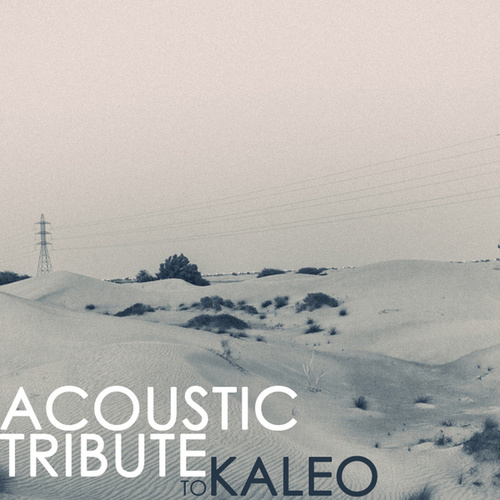 Acoustic Tribute to Kaleo de Guitar Tribute Players