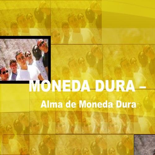 Alma de Moneda Dura de Moneda Dura
