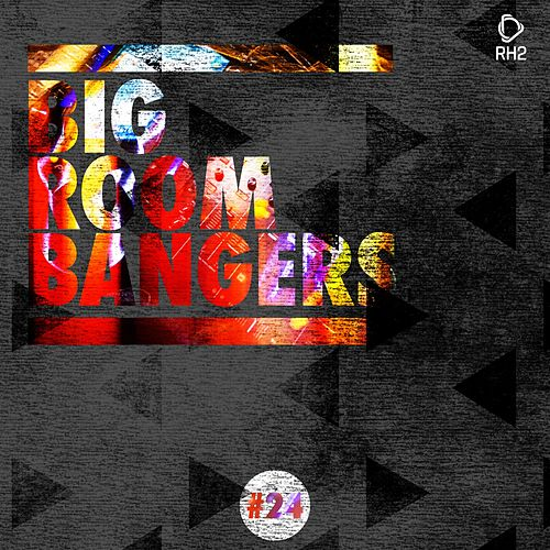 Big Room Bangers, Vol. 24 by Various Artists