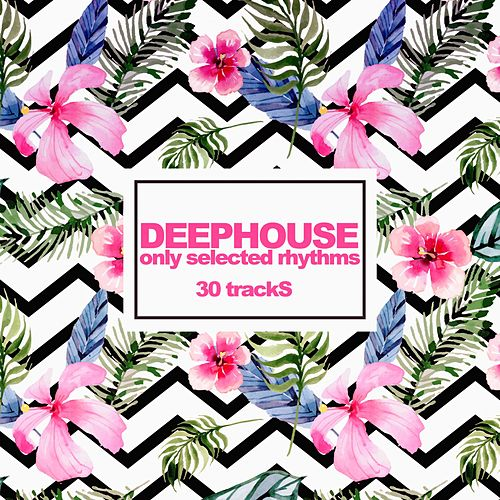 Deephouse (Only Selected Rhythms) by Various Artists