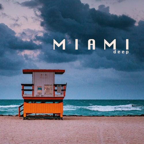 Miami Deep van Various Artists