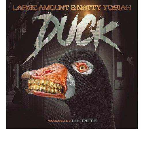 Duck de Large Amount