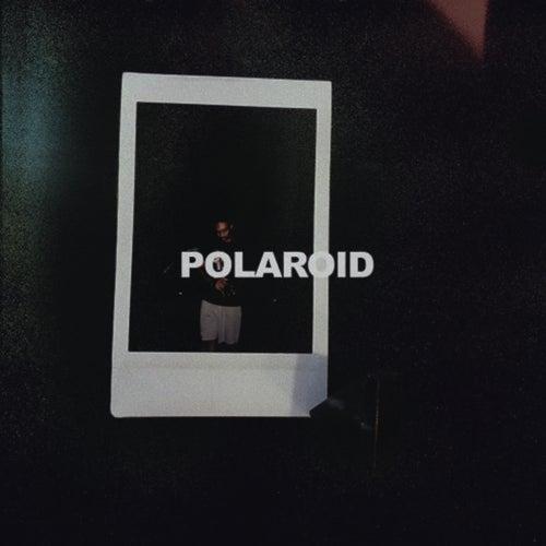 Polaroid von B1uan