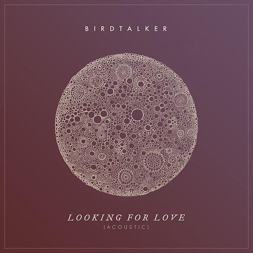 Looking for Love (Acoustic) von Birdtalker