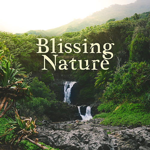 Blissing Nature de soundscapes