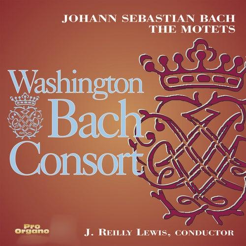 Bach: The Motets de Washington Bach Consort