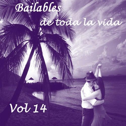 Bailables de Toda la Vida, Vol. 14 de Various Artists