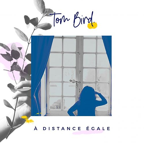 À distance égale de Tom Bird
