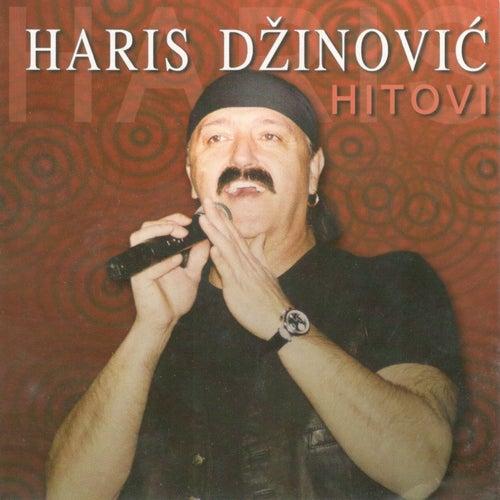 Hitovi von Haris Dzinovic