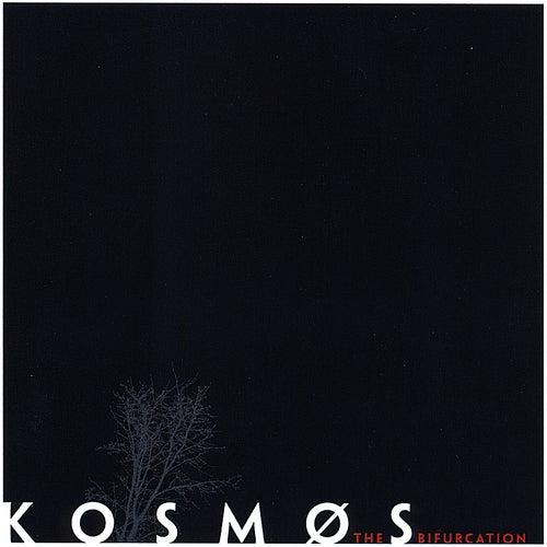 The Bifurcation de Kosmos