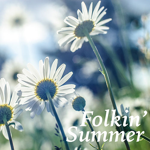Folkin' Summer de Various Artists