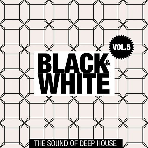 Black & White, Vol. 5 (The Sound of Deep House) by Various Artists