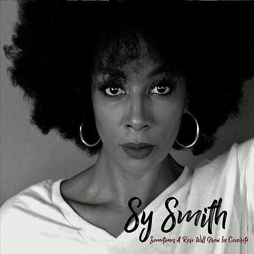 Sometimes a Rose Will Grow in Concrete by Sy Smith