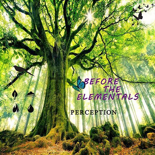 Perception by Before the Elementals