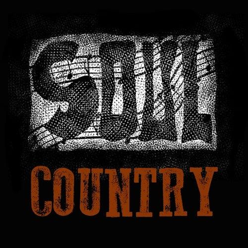 Soul Country de Various Artists