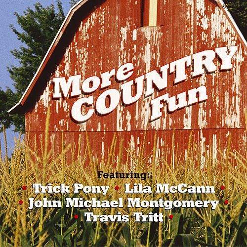 More Country Fun by More Country Fun