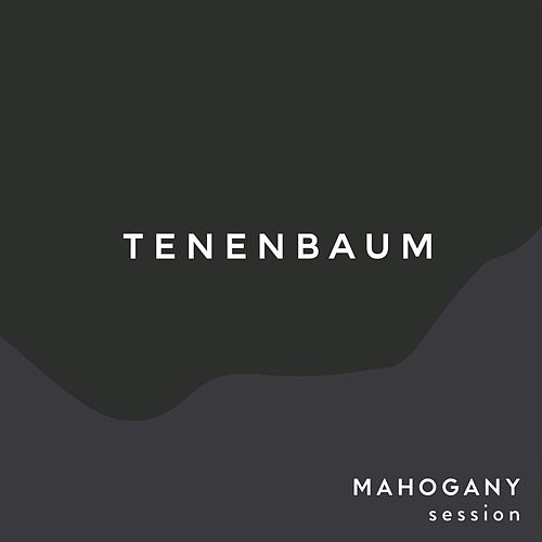 Tenenbaum (Mahogany Sessions) de The Paper Kites