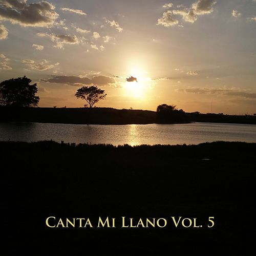 Canta Mi Llano Vol 5 de Various Artists