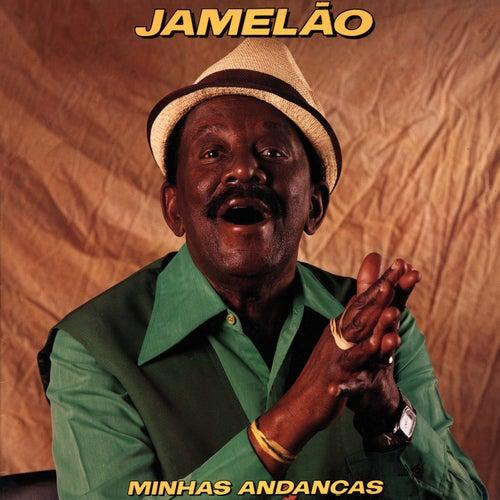 Minhas Andanças by Jamelão
