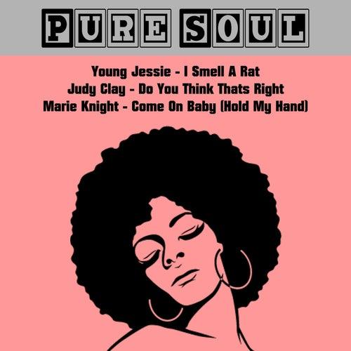Pure Soul von Various Artists
