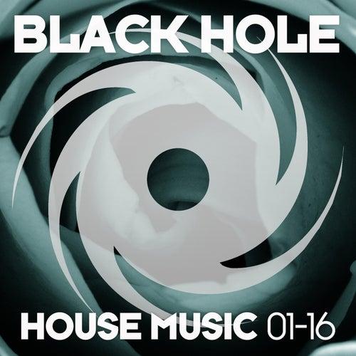 Black Hole House Music 01-16 de Various Artists