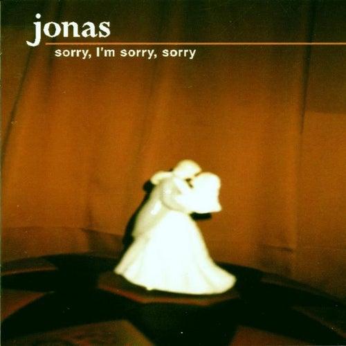 Sorry,  I' m sorry,  sorry by Jonas