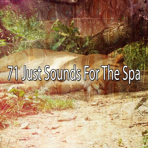 71 Just Sounds For The Spa von Best Relaxing SPA Music