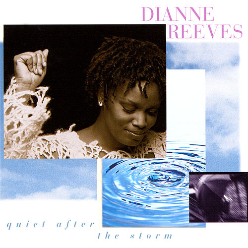 Quiet After The Storm von Dianne Reeves