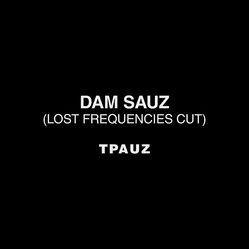 Dam Sauz (Lost Frequencies Cut) de Two Pauz