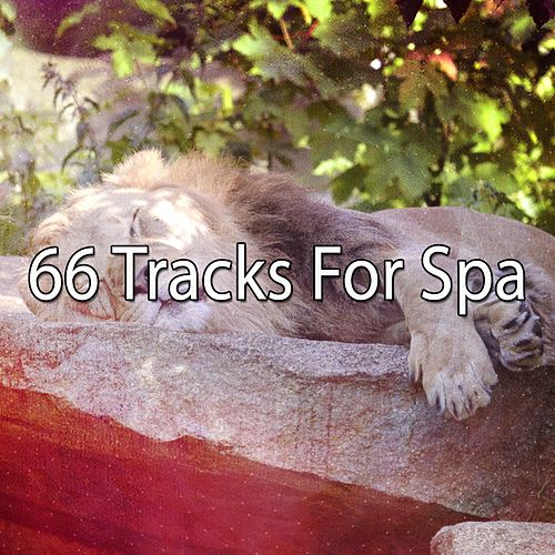66 Tracks For Spa von Best Relaxing SPA Music