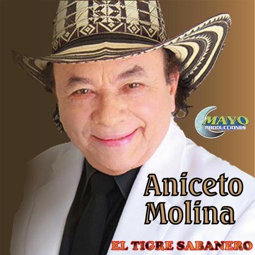 Aniceto Molina Mis Exitos de Aniceto Molina