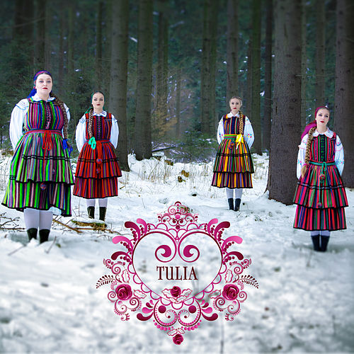 Enjoy The Silence (Folk Version) von Tulia