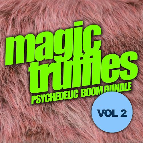 Magic Truffles, Vol.2: Psychedelic Boom Bundle - EP by Various Artists