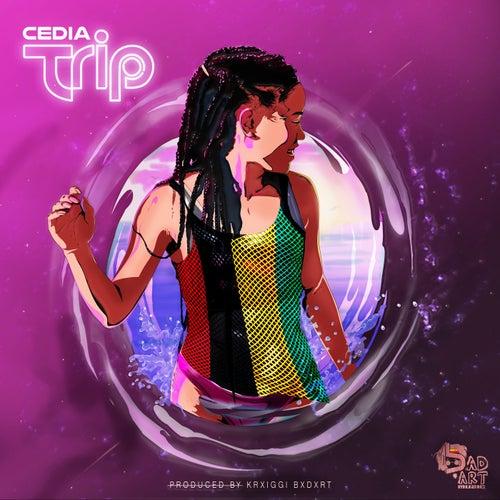 Trip (Feat. Cedia) - Single by KraiGGi BaDArT