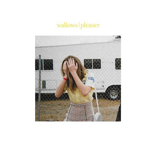 Pleaser by Wallows