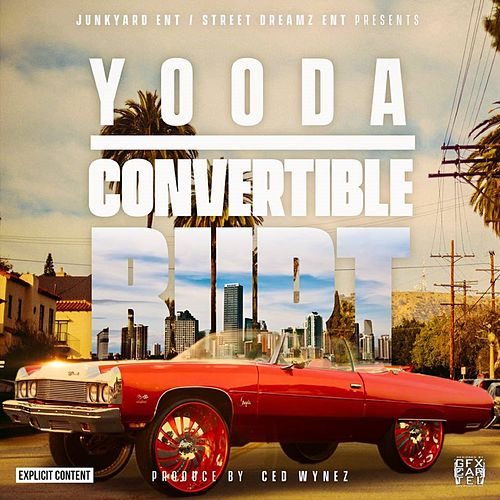 Convertible Burt by Yooda