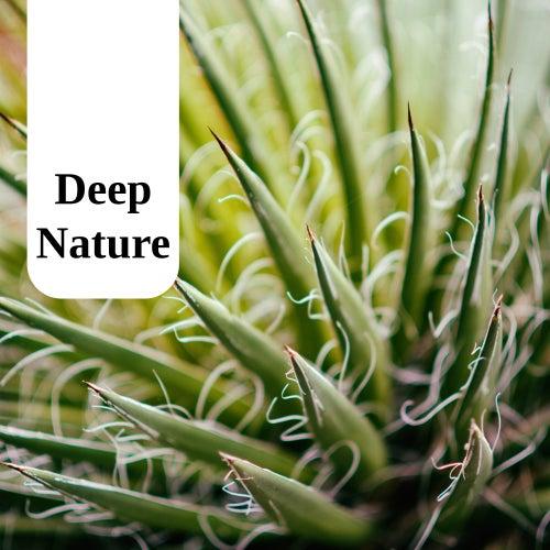 Deep Nature de Massage Tribe