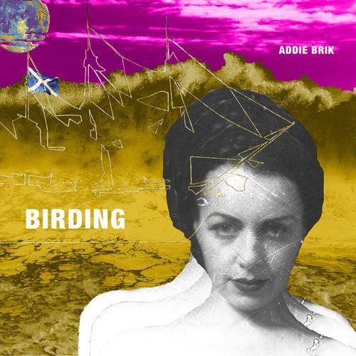 Birding by Addie Brik