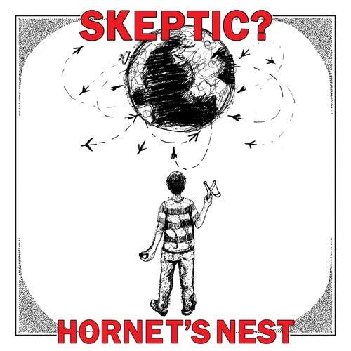 Hornet's Nest by Skeptic?