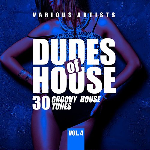 Dudes of House (30 Groovy House Tunes), Vol. 4 von Various Artists