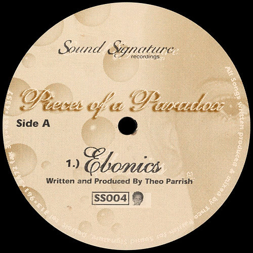 Pieces of a Paradox von Theo Parrish