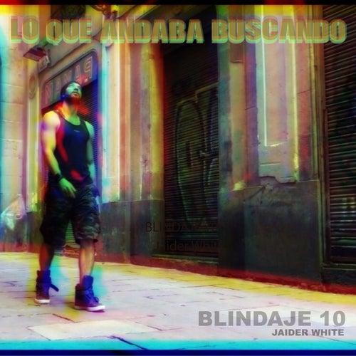 Lo que andaba buscando de Blindaje 10