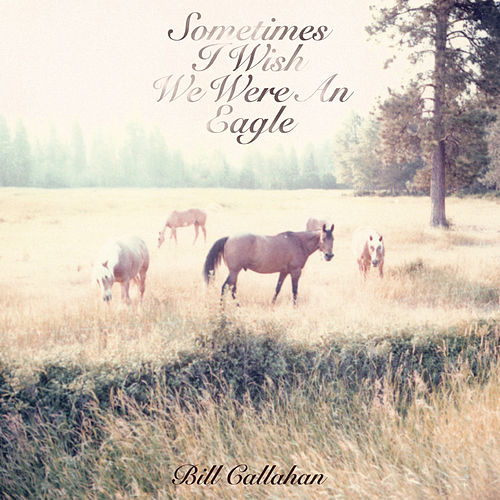 Sometimes I Wish We Were An Eagle by Bill Callahan