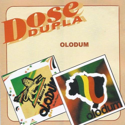 Dose dupla 1 by Olodum