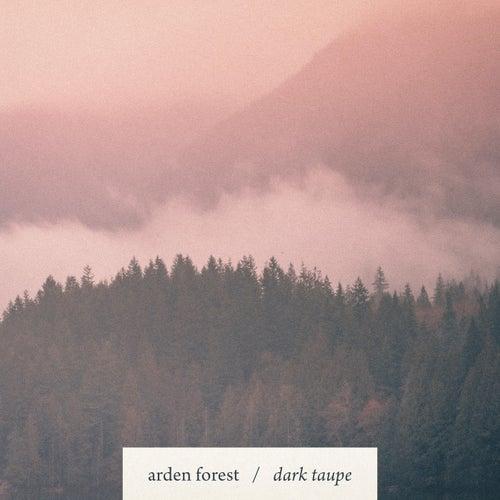 Dark Taupe by Arden Forest