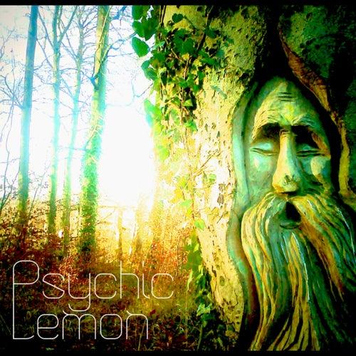 Psychic Lemon by Psychic Lemon
