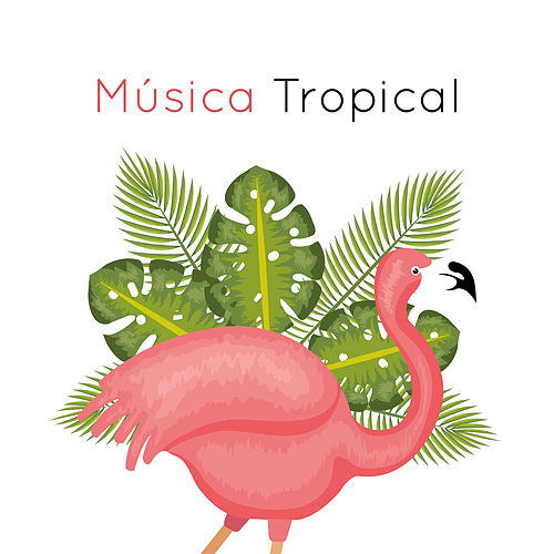 Música Tropical by Chillout Lounge