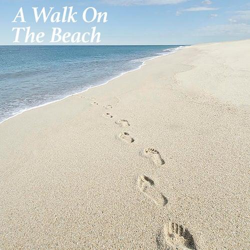 A Walk On The Beach von Various Artists