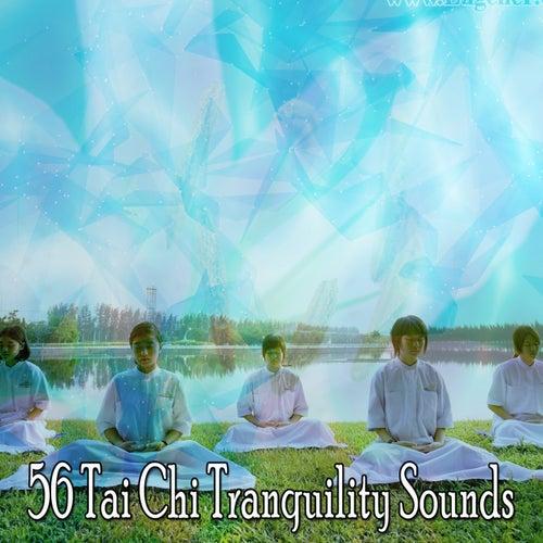 56 Tai Chi Tranquility Sounds de Meditación Música Ambiente