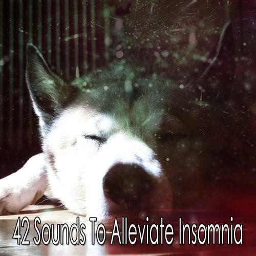 42 Sounds To Alleviate Insomnia von Rockabye Lullaby